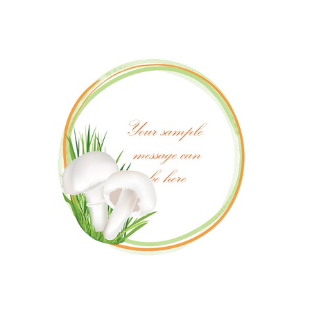 champignon: Mushrooms vector frame  Champignon background with copy space  Floral decor isolated on white background Food common mushroom illustration   Illustration