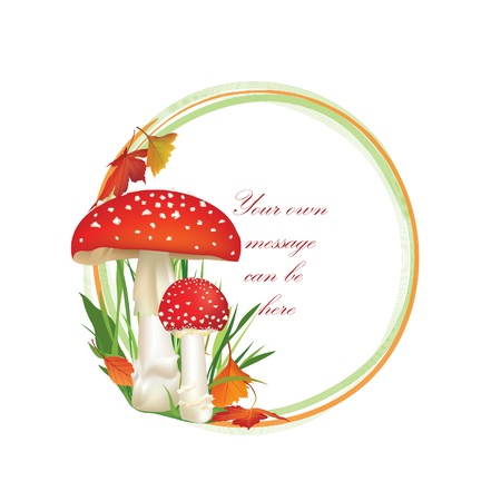 toadstool: Autumn frame circle shape isolated on white background  Toadstool vector illustration  Red Amanita Mushroom, Poisonous Organism   Illustration