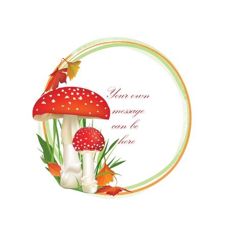 mycology: Autumn frame circle shape isolated on white background  Toadstool vector illustration  Red Amanita Mushroom, Poisonous Organism   Illustration