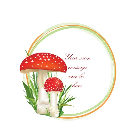 inedible: Summer forest frame circle shape  Red poison mushroom isolated on white background  Vector illustration set
