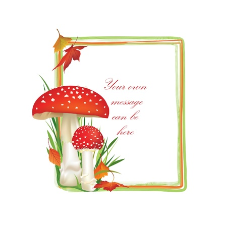 inedible: Autumn frame of square shape  Red poison mushroom isolated on white background  Vector illustration set