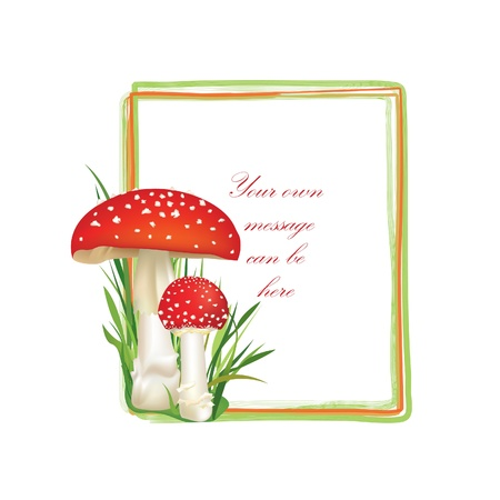 toadstool: Summer forest frame rectangle shape  Red poison mushroom isolated on white background  Vector illustration set