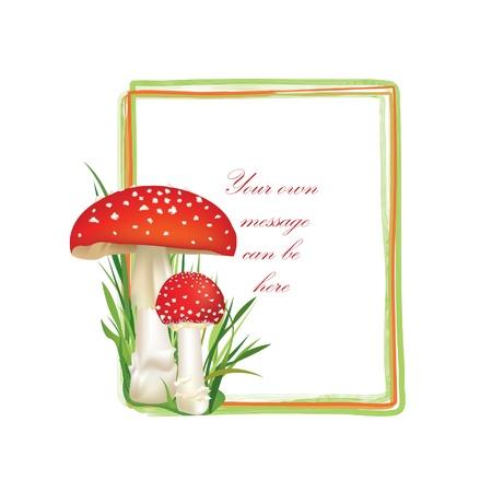 inedible: Summer forest frame rectangle shape  Red poison mushroom isolated on white background  Vector illustration set