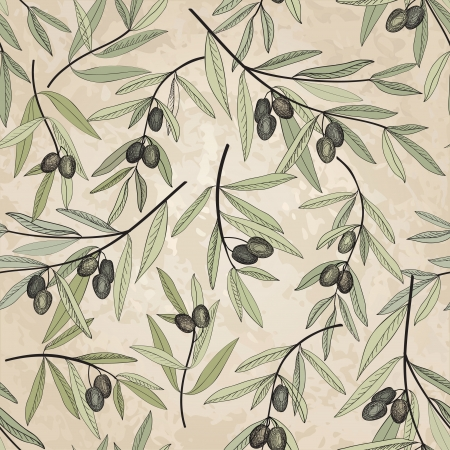Olive seamless pattern  Hand drawn olive branch background  Old fashion olive decorative texture for label, pack   Vector