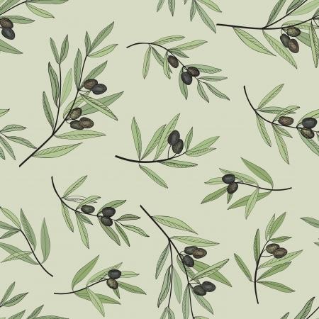 rama de olivo: Modelo inconsútil de oliva a mano de fondo rama de olivo dibujado de la vieja manera de oliva textura decorativa de la etiqueta, envase