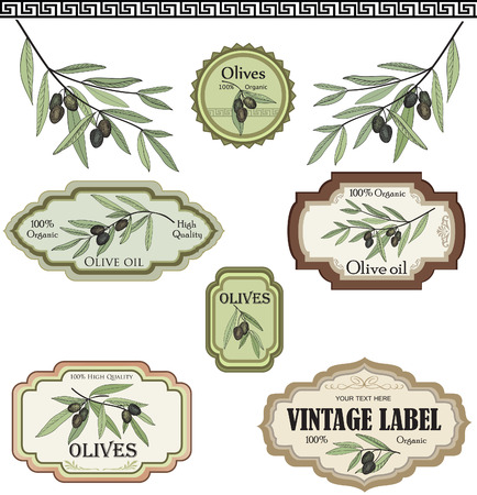 olive oil: Vintage olive labels set collection