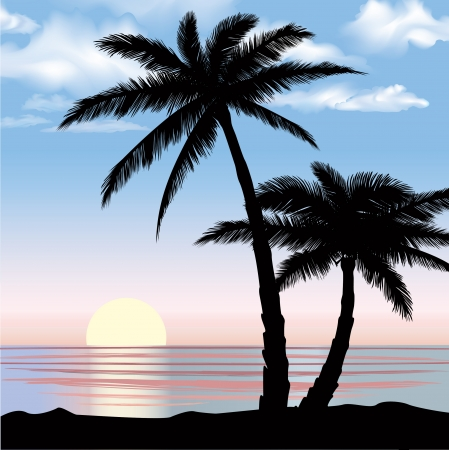 palm trees silhouette: Summer holidays background  Seaside View Landscape  Vector beach resort wallpaper