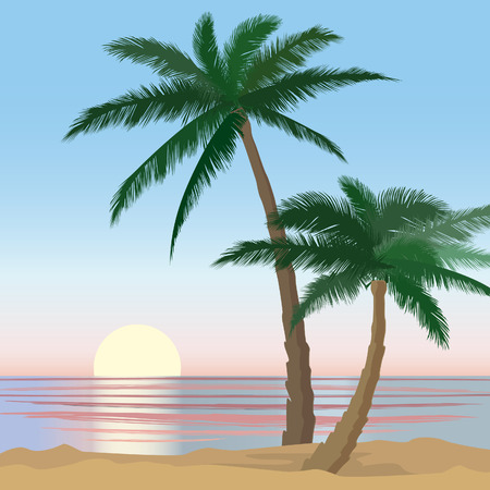 ocean view: Summer holidays background  Seaside View Poster  Beach resort wallpaper  Summer holiday landscape  Palm trees at ocean beach  Illustration