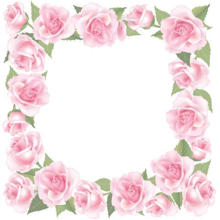 flower rose: Flower rose background  Floral frame with pink roses