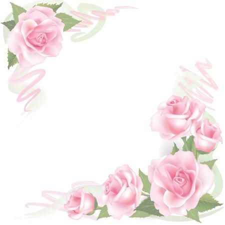 꽃 핑크 장미와 배경 꽃 프레임 장미