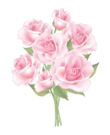 posy: Flower rose posy isolated on white background