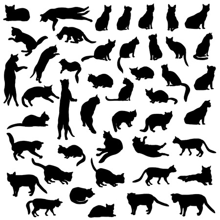 cat tail: Cats silhouette set.