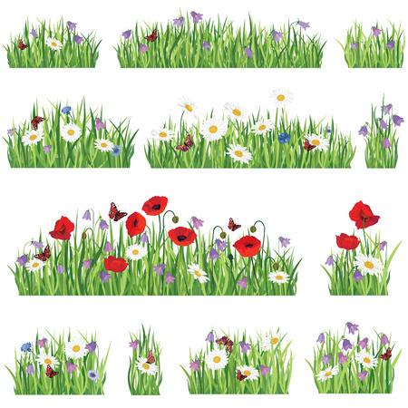 잔디 배경 설정 여름 꽃 테두리 컬렉션 자연 아이콘 일러스트
