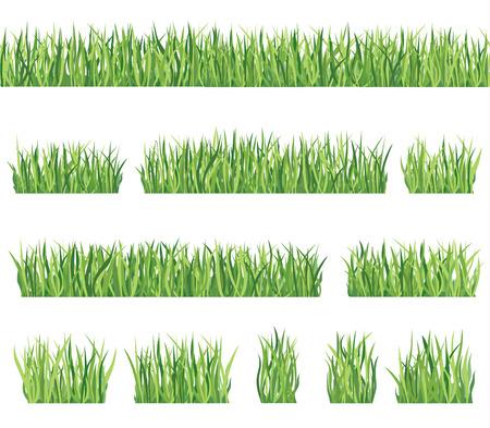 Gras grens achtergrond in te stellen van de zomer pictogram en naadloze frame collectie