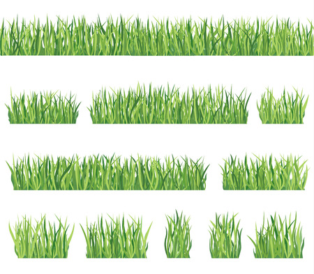Grass border background set  Summer icon and seamless frame collection  Vector