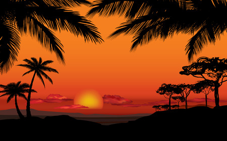 African landscape with palm trees silhouette