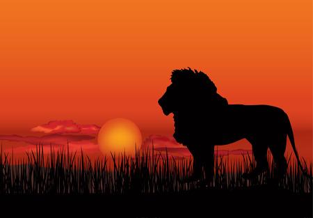 jirafa: Paisaje africano con la silueta del animal. Fondo del atardecer Savanna.