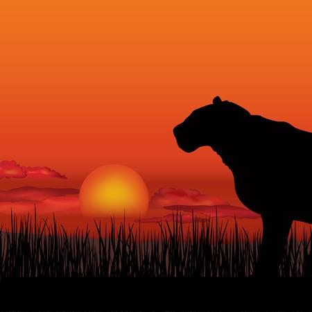 paisagem: Paisagem africano com a silhueta de animais