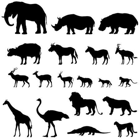 Afrykańskich zwierząt silhouettes zestaw. Zwierzęta Vector strefie tropikalnej ikony kolekcji.