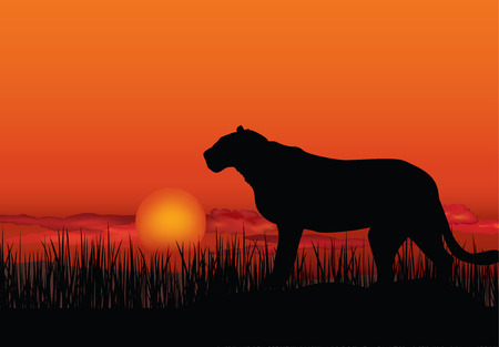 African landscape with animal silhouette Vector