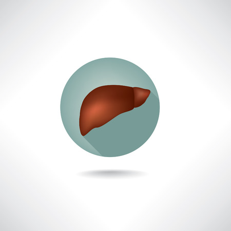 common bile duct: Liver icon. Human anatomy web buttons set.