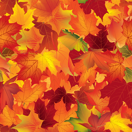 Autumn texture. Wallpaper with maple leaves. Fall seamless pattern. Nature background. Illustration