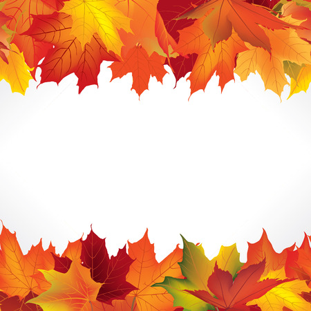 fall winter: Autumn frame with leaves. Fall seamless border background with copy space.