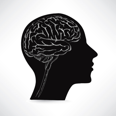 midbrain: Female brain. Think icon concept. Vector sketch illustration.