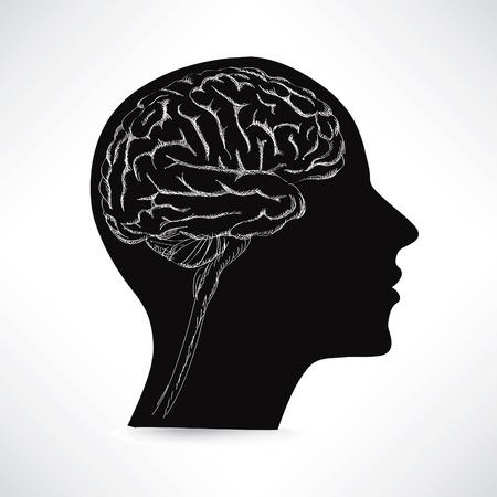 basal ganglia: Female brain. Think icon concept. Vector sketch illustration.