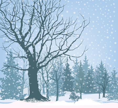 winter garden: Christmas snow landscape wallpaper. Snowy forest background. Tree without leaves over snow.  Winter garden.