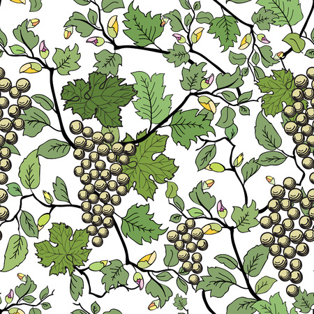 Floral seamless background with grape branch. Decorative flower and fruit pattern. Vector