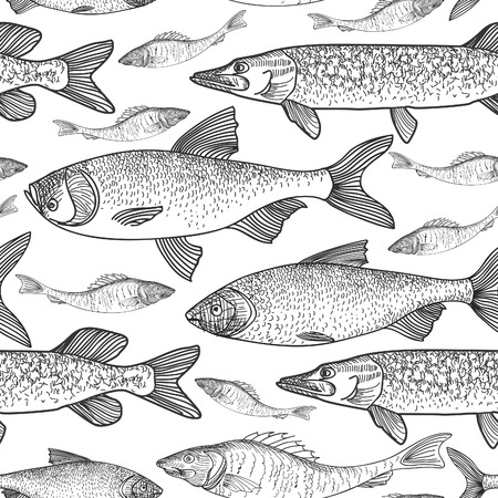 brown trout: Fish seamless background Illustration