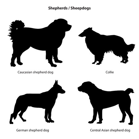 sheepdog: Dog silhouette icon set. Sheped dog collection. Sheedogs.