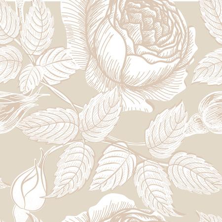 rosas blancas: Sin patrón floral. Flor de fondo en estilo retro. Textura inconsútil floral con flores rosas.
