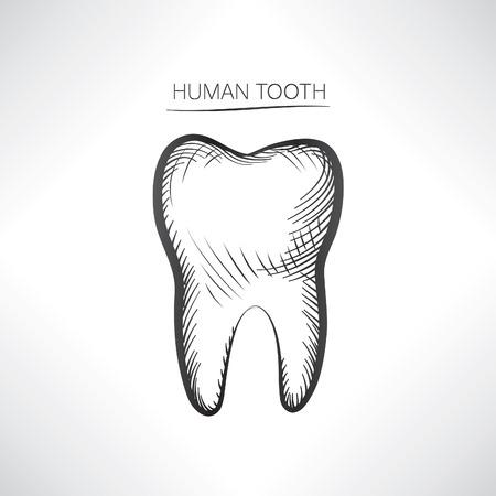 dientes sucios: Aislado Diente. Diente dibujado a mano icono de boceto. Símbolo de dientes.