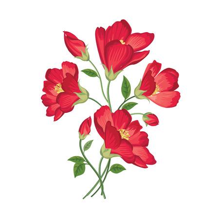florale: Blumen-Bouquet. Floral frame. Flourish Grußkarte. Blühende Blumen isoliert auf weißem Hintergrund