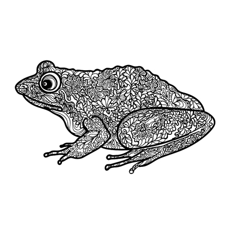 cartoon frog: Frog isolated. Black and white ornamental doodle frog illustration with zentangle decorative ornament