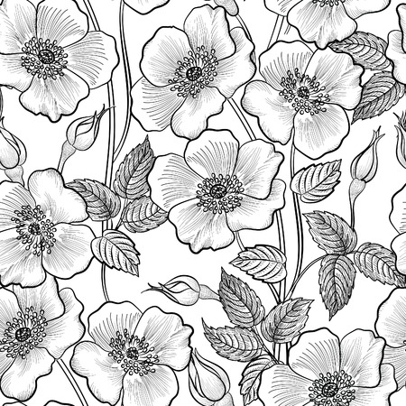Floral seamless outline sketch pattern. Flower background. Floral tile spring texture with flowers Ornamental flourish garden cover for card design