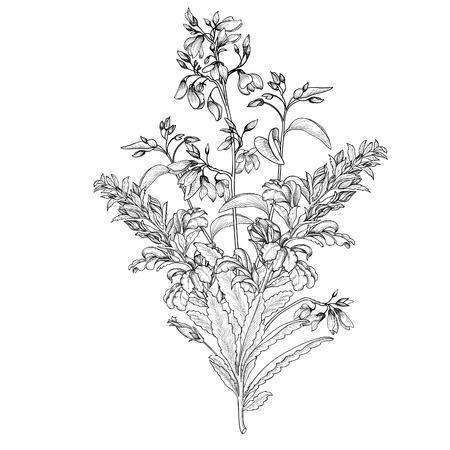 花の背景。花ブーケ ヴィンテージ カバー。コピー スペース付きの頭角を現します。エキゾチックな花と分離した花束。