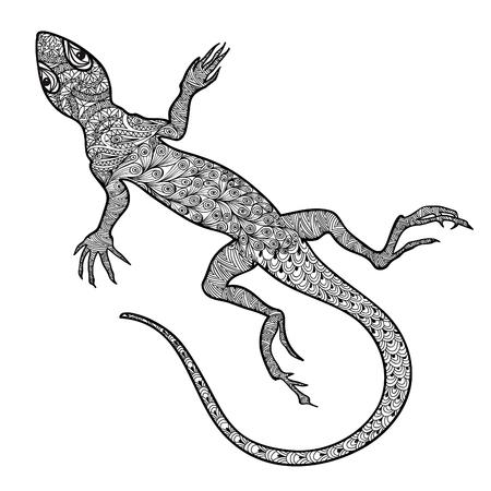 Lagarto aislado. Vector dibujado a mano con el patrón de salamandra zentagle ornamental tribal étnica. Bosquejo de lagartos reptiles con colas largas curvas