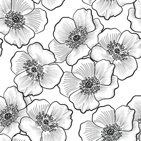 framework: Floral seamless pattern. Flower background. Flourish sketch black and white texture with flowers daisy.