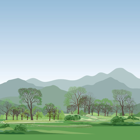 rock layers: Spring landscape with mountains, fields and forest. Nature background
