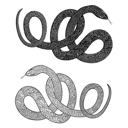 Snake set. Engraved hand drawn vector illustraction of ornamental decorated in zentagle style snakes. Illustration