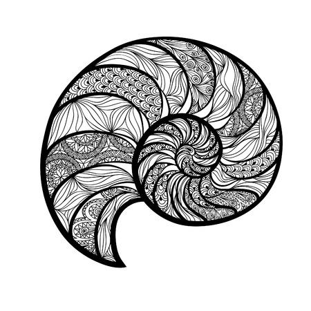 nautilus shell: Seashell nautilus. Sea shell set ingraved vector illustration isolated on white background. Doodle sea shell. Marine life ornamental zentangle image Illustration