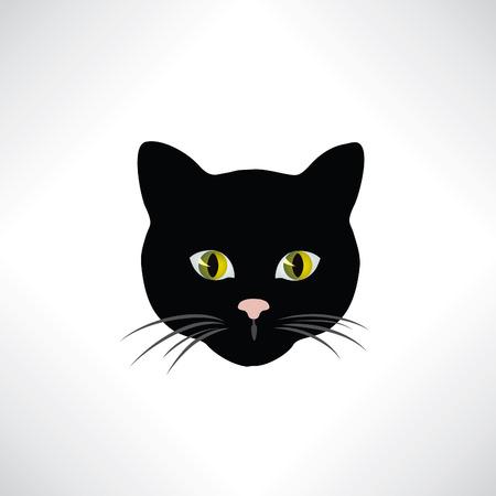 gato dibujo: Gato. Cara de los gatos aislado. Pet elemento de diseño