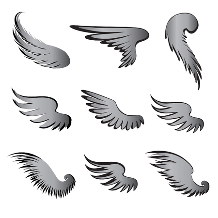 wingspread: Wings Vector Set. Illustration