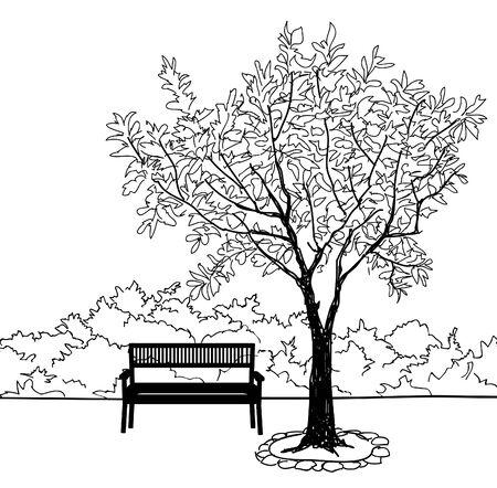 city park: Bench in city park. Trees and plants. Landscape with bench. Doodle landscape vector illustration Illustration