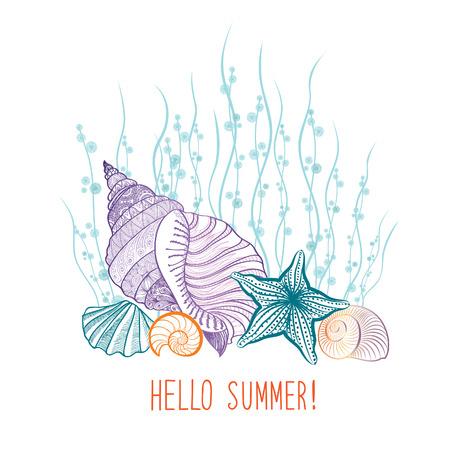 여름 배경입니다. 여름 휴가 조개 바다 스타 커버. 안녕하세요 여름 인사말 카드. 낙서 벡터 일러스트 레이션