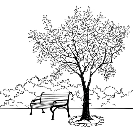 Bench in city park. Trees and plants. Landscape with bench. Doodle landscape vector illustration Illustration