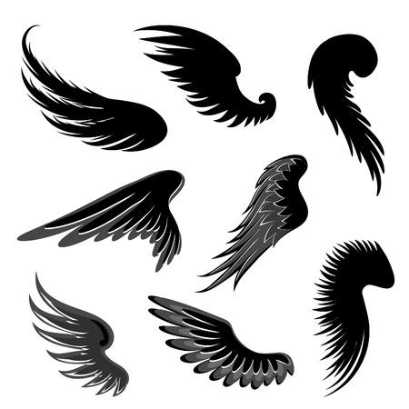 white feather: Alas del vector. Vectores